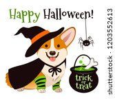 halloween corgi puppy dog... | Shutterstock .eps vector #1203552613