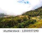 mountain serpentine in the...   Shutterstock . vector #1203557290