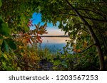 beautiful autumn leaves and... | Shutterstock . vector #1203567253