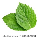 Stock photo mint leaves isolated on white mint clipping path professional food photography 1203586300