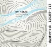 topographical raster background ...   Shutterstock . vector #1203594313
