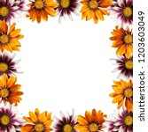 beautiful floral background... | Shutterstock . vector #1203603049