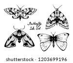 nifty gentle hand drawn... | Shutterstock .eps vector #1203699196