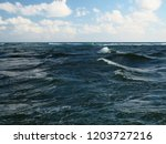 jupiter florida inlet and rough ... | Shutterstock . vector #1203727216