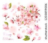 pink sakura flower petals set.... | Shutterstock .eps vector #1203859006
