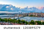 istanbul  turkey   agust 12 ... | Shutterstock . vector #1203895279