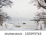 beautiful winter scenery ...   Shutterstock . vector #120393763