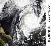 hurricane rosa  tropical storm. ... | Shutterstock . vector #1203941089