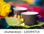 cup of tea. picnic. autumn.... | Shutterstock . vector #120394714