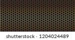 luxury seamless geometric... | Shutterstock .eps vector #1204024489