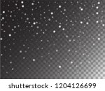 vector storm trail winter... | Shutterstock .eps vector #1204126699