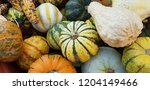 autumn vegetables and fruits | Shutterstock . vector #1204149466