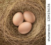 vector realistic illustration... | Shutterstock .eps vector #1204156156