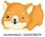 a really happy pure breed corgi ... | Shutterstock .eps vector #1204158079