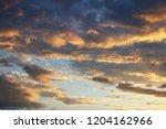 cumulus in the evening sky in... | Shutterstock . vector #1204162966