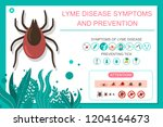 preventing tick bite and lyme... | Shutterstock .eps vector #1204164673