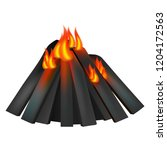 burning fire icon. realistic... | Shutterstock .eps vector #1204172563