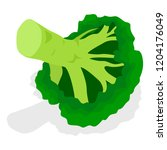 eco broccoli icon set.... | Shutterstock .eps vector #1204176049