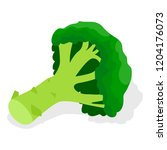 green broccoli icon set.... | Shutterstock .eps vector #1204176073