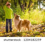 Little Boy Playing With Collie...