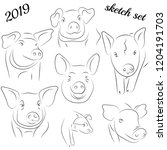 sketch of pig. drawing pig and... | Shutterstock .eps vector #1204191703