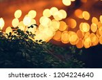 green tree against the... | Shutterstock . vector #1204224640