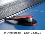 ping pong. accessories for... | Shutterstock . vector #1204253623
