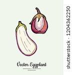 eggplant   hand drawn... | Shutterstock .eps vector #1204362250