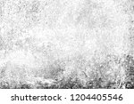 abstract background. monochrome ... | Shutterstock . vector #1204405546