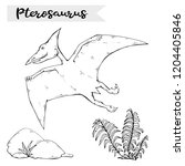 vector pterosaur with plant and ...   Shutterstock .eps vector #1204405846