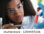 a female chemist holds test... | Shutterstock . vector #1204455136