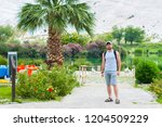 man stands near the palm tree... | Shutterstock . vector #1204509229