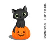 cute black cat in sitting on a... | Shutterstock . vector #1204546186