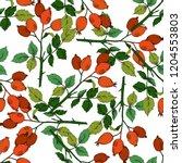 vector autumn red rose hip... | Shutterstock .eps vector #1204553803