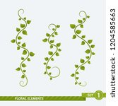 isolated floral elements   set... | Shutterstock .eps vector #1204585663