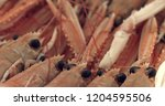 langoustines isolated on white... | Shutterstock . vector #1204595506