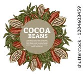 cacao beans plant  vector... | Shutterstock .eps vector #1204603459