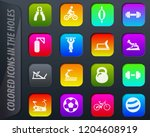 sport equipment colored icons... | Shutterstock .eps vector #1204608919