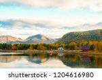 the colors of autumn | Shutterstock . vector #1204616980
