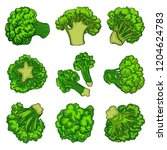broccoli icon set. cartoon set... | Shutterstock .eps vector #1204624783