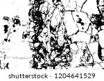 black marble cracks grunge... | Shutterstock . vector #1204641529