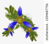 decorative flower image. floral ... | Shutterstock . vector #1204687756