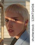closeup portrait of stylish...   Shutterstock . vector #1204716436