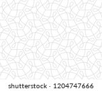 pattern with thin curl lines... | Shutterstock .eps vector #1204747666