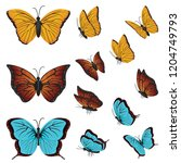 colorful butterflies beautiful... | Shutterstock .eps vector #1204749793