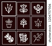 set of 9 plant outline icons...   Shutterstock .eps vector #1204757506