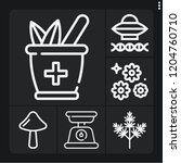 set of 6 nature outline icons... | Shutterstock .eps vector #1204760710