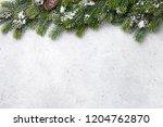 christmas fir tree branch... | Shutterstock . vector #1204762870
