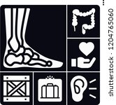 set of 6 medical filled icons... | Shutterstock .eps vector #1204765060