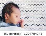 close up of cute little newborn ... | Shutterstock . vector #1204784743